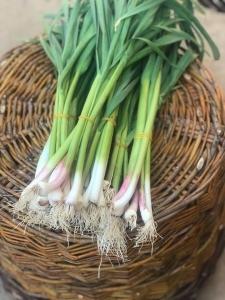 Producător local legume Târgoviște
